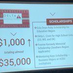 Want to learn more about the scholarships the Delta Research and Educational Foundation provides? Check out some of the scholarships below!