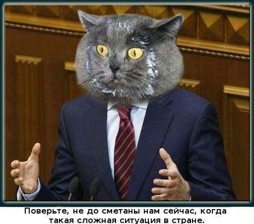 Порошенко вніс на розгляд Ради законопроект про створення Вищого антикорупційного суду - Цензор.НЕТ 2285