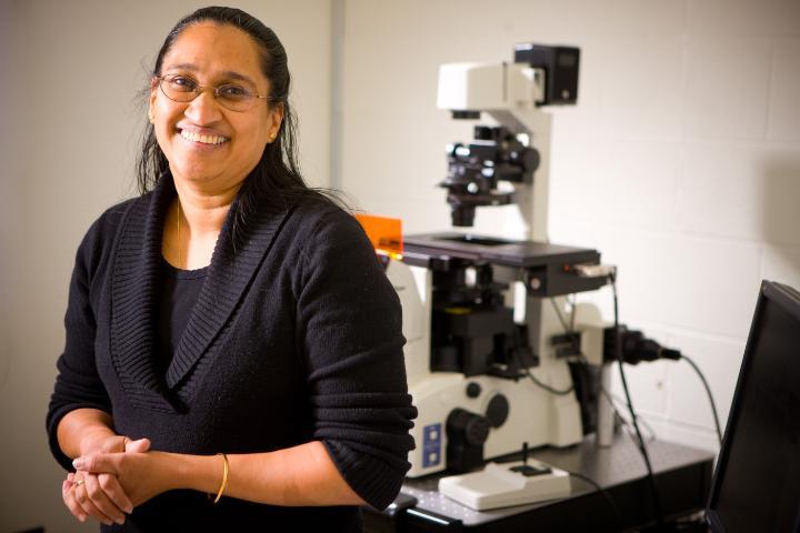 Professor Shermali Gunawardena of Biological Sciences