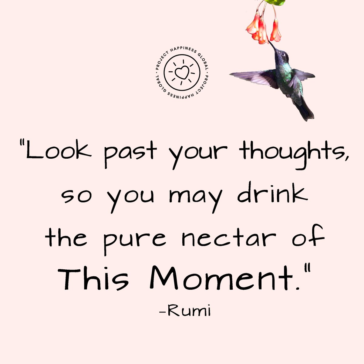 &quot;Look past your thoughts, so you may drink the pure nectar of This Moment.&quot; –Rumi  #projecthappiness #mindfulness<br>http://pic.twitter.com/D3s20Q9ii1