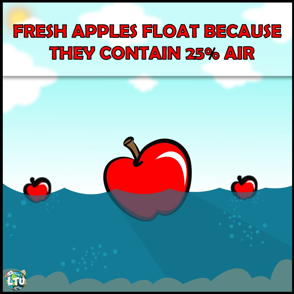 Learn The Universe On Twitter And Apples Contain High Levels Of