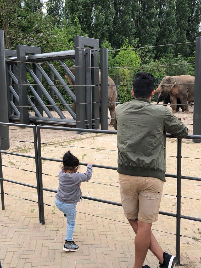 Reliving my childhood with my little one! So precious ❤️   #zoo #Gracia https://t.co/37C2pjqWD0