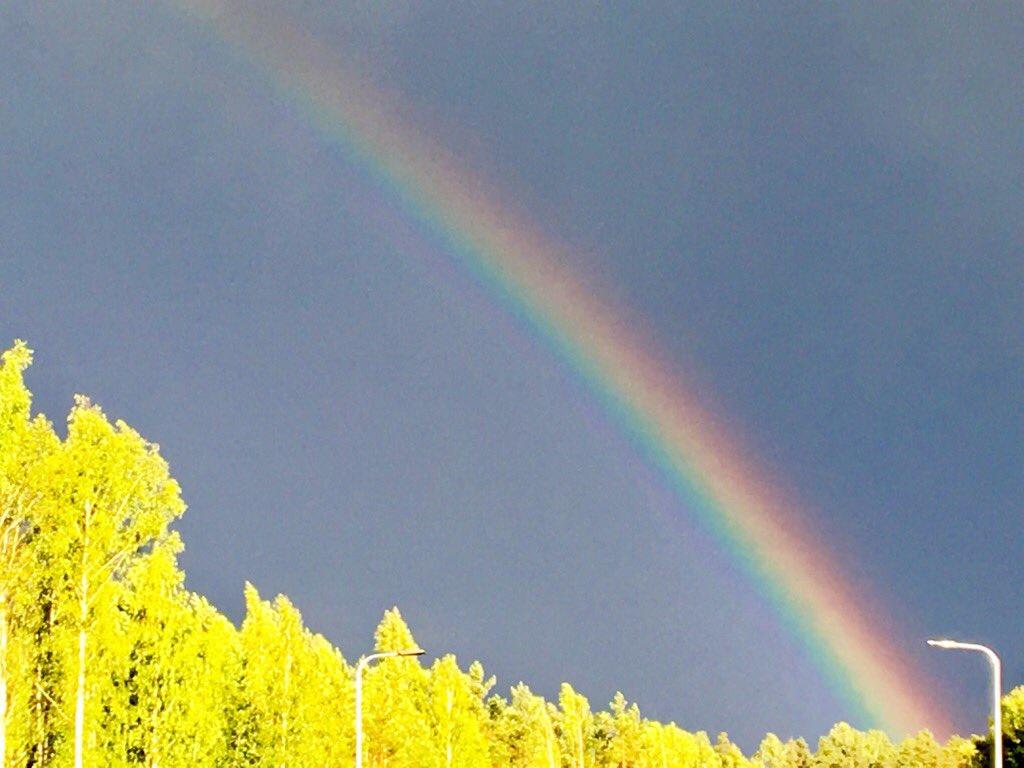 Toiveiden taivaallinen toteutuma : sade ☀️ #kesä #Suomi https://t.co/NjoosL06Jt