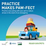 Image for the Tweet beginning: It's National Pet Preparedness Month!