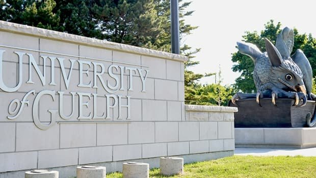 All full-time female faculty members at the University of Guelph will be getting a raise after a salary review found they were being paid less than their male colleagues https://t.co/qFnrIE6XvH