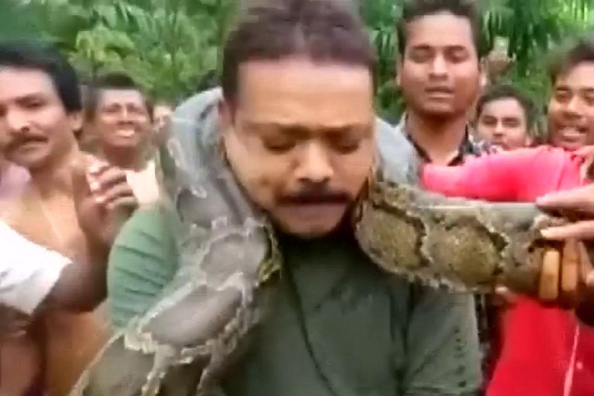 Python strangles forest ranger as he poses for selfie with it wrapped around his neck  https://t.co/BJnfsaFFeC