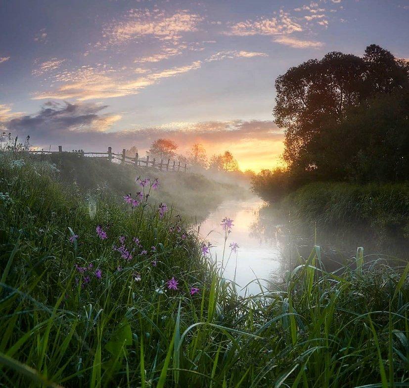 Картинки утро природа рассвет, открытка летием