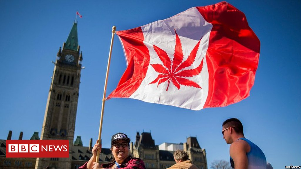 Canada's parliament passes law legalising recreational cannabis use  https://t.co/NRcOozPK9A https://t.co/muCV5Ujke7