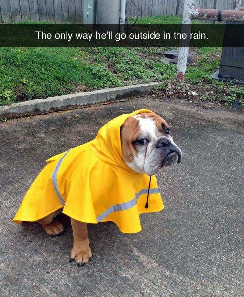 Rain Rain go away...... 💦💦