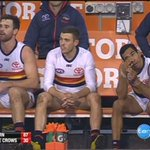 Image for the Tweet beginning: WATCH: @Adelaide_FC's season of woe