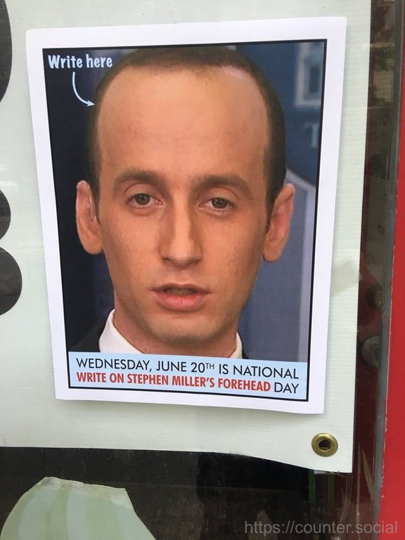 ICYMI - Today is National Write on Stephen Millers Forehead Day - Go!