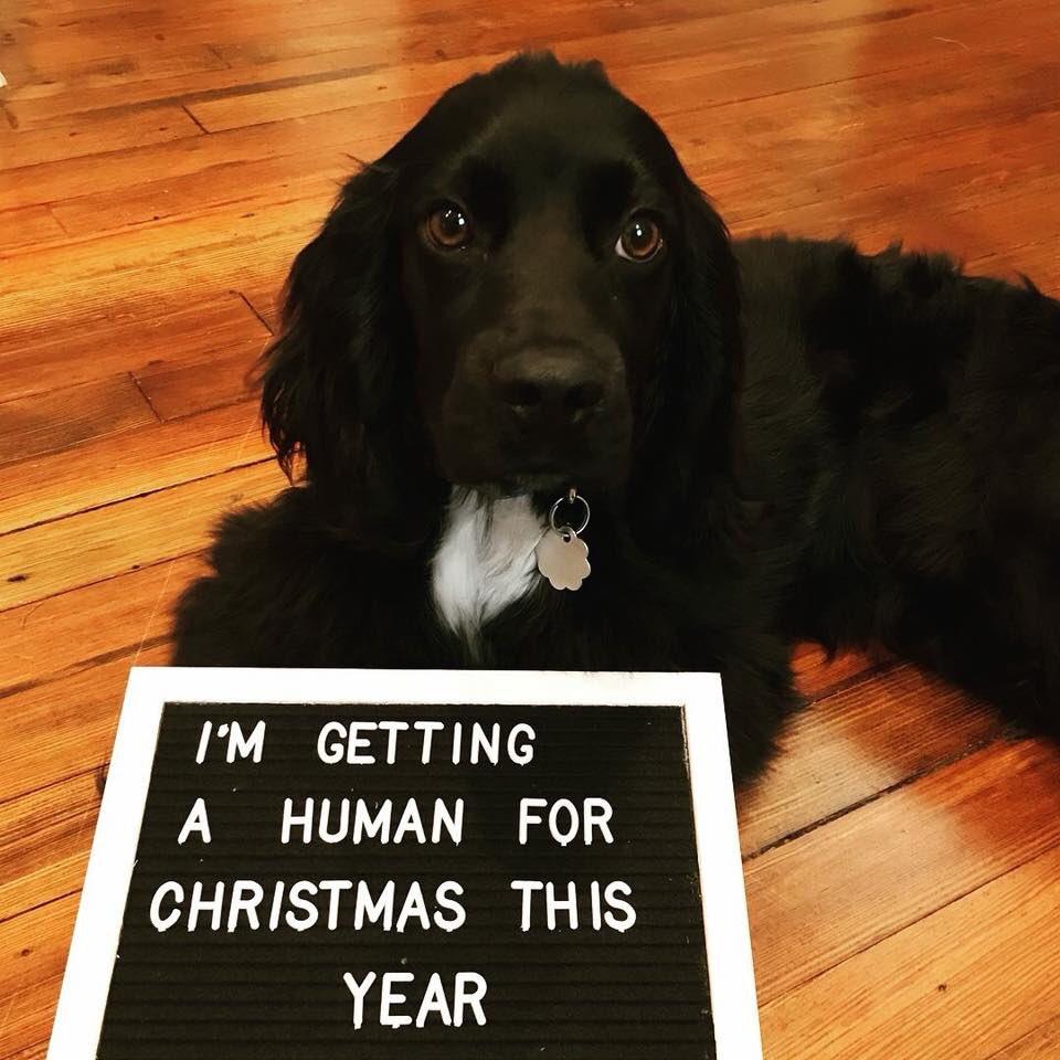 Best christmas gift for men
