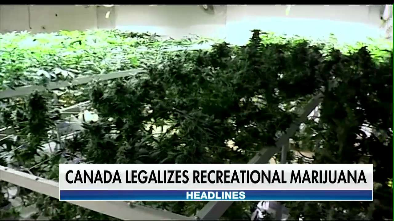 Canada legalizes recreational marijuana @foxandfriends https://t.co/PT5cpqU5s5