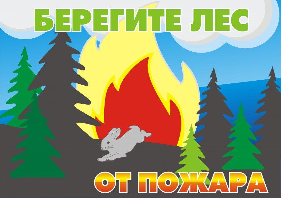 Картинки про безопасность леса