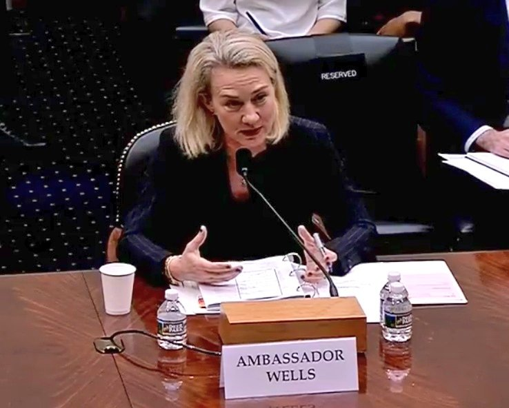 Amb Alice G. Wells Principal Deputy Assistant Secretary (South & Central Asian Affairs), State dept briefs house foreign affairs committee on Afghanistan; Says we would like pakistan to arrest & expel Taliban. Adds, recognises the senstivities associated with durrand line
