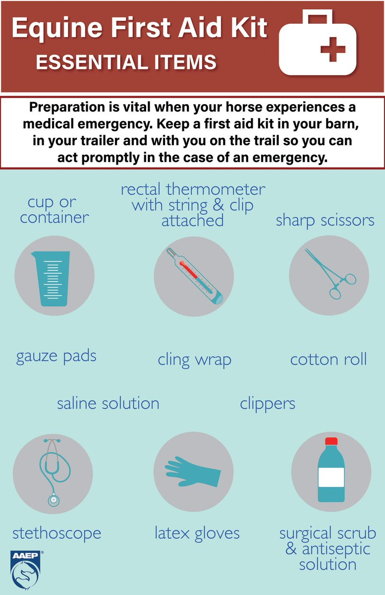 Preparation Is Vital When Confronted With A Medical Emergency Learn More About How To Prepare For An Equine By Visiting