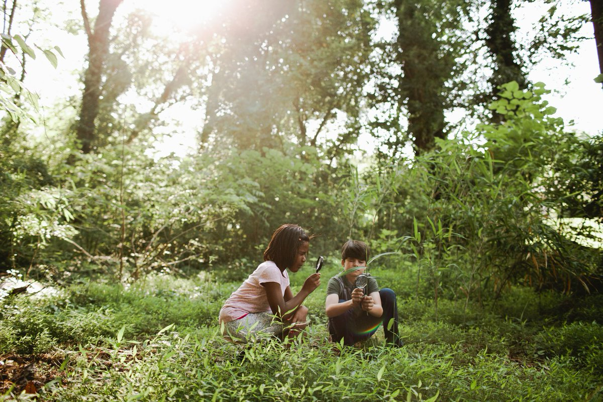 Why Kids Need To Spend Time In Nature >> Pisces Foundation On Twitter Why Is It Important For Kids To Spend