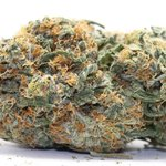 Image for the Tweet beginning: 🍊Twisted Citrus🍋 from cheapweed. Get 5%