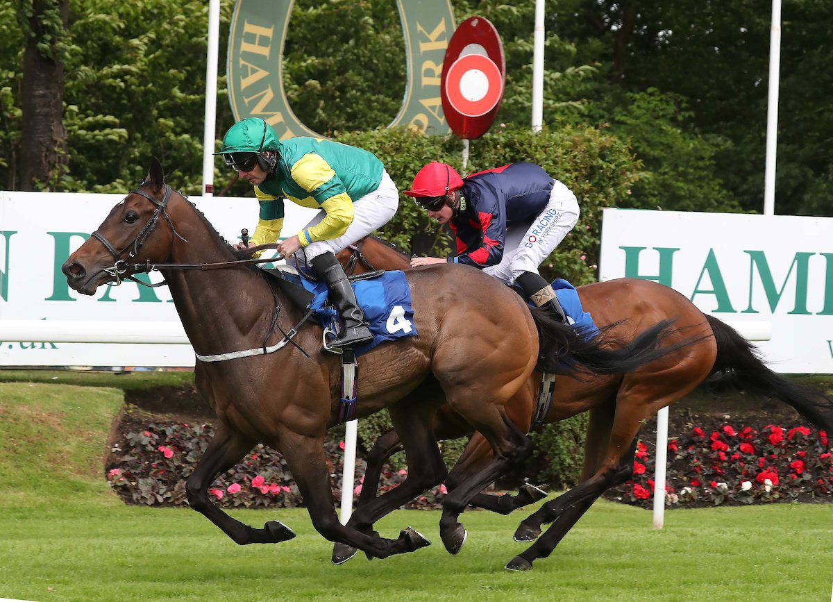 #BothwellCastleRaceday It was a treble win today for @RichardFahey with Baronial Pride, Sioux Frontier and Royal Cosmic!   Congratulations to all winning connections 🏇