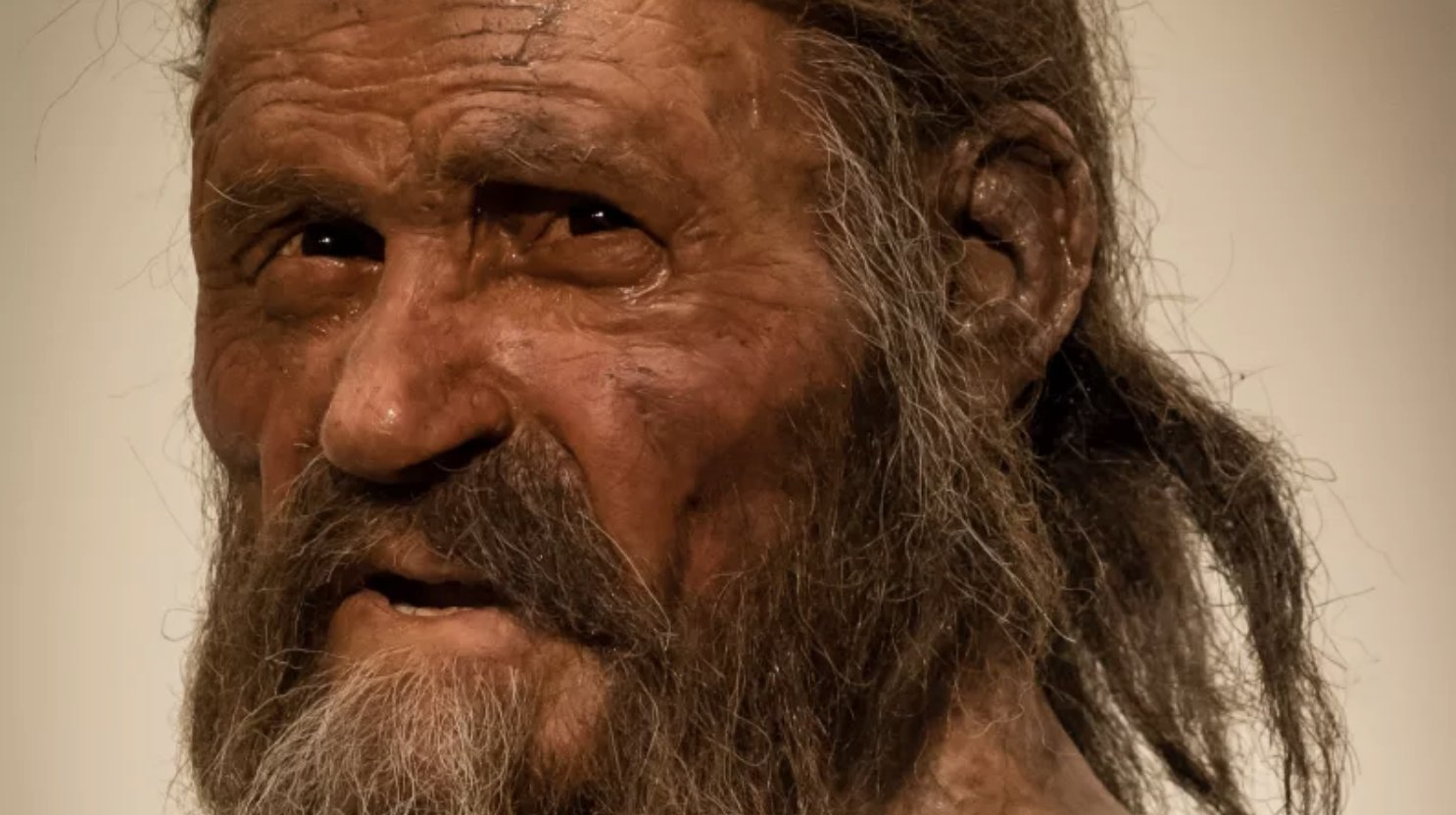Final days of Ötzi the iceman revealed through new analysis of his tools https://t.co/LgFnqLFdY4 https://t.co/uRDDxmPxSo