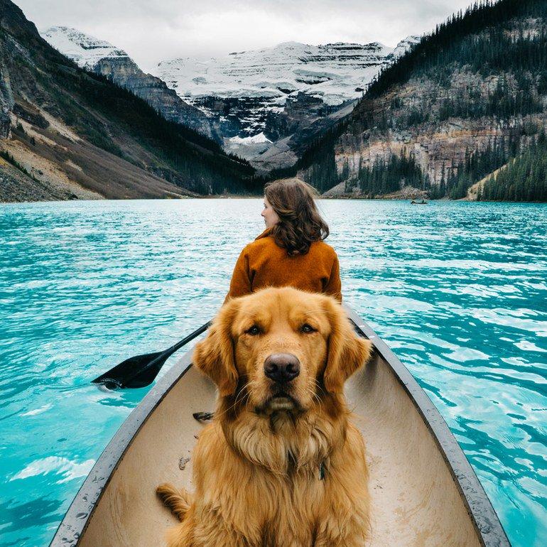16 pets of Instagram who travel better than we do https://t.co/vh43g5v82k https://t.co/uNAEiBjOBU
