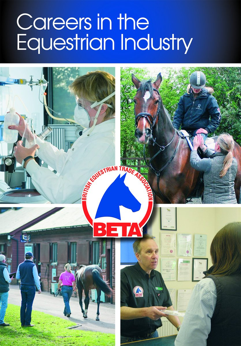 the complete guide to horse careers