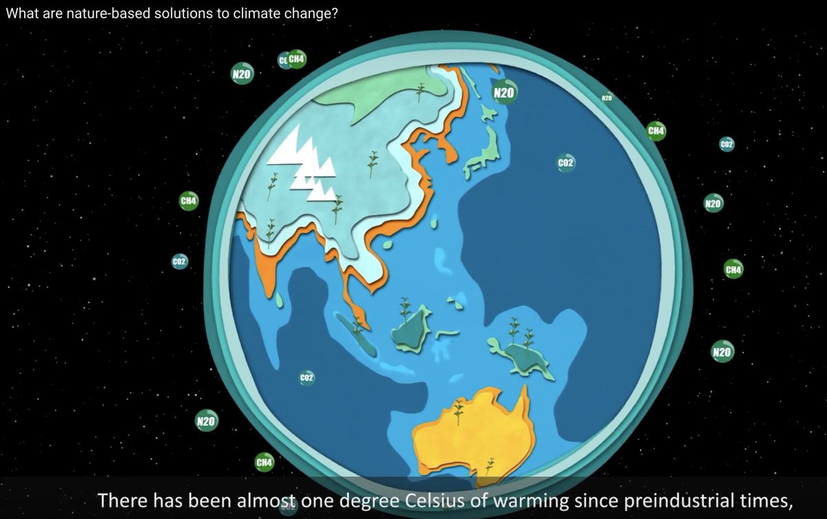 "Many @AdaptFutures are asking but what are #naturebasedsolutions to #climatechange?"" Well, we made an animation to answer just that qu. Pls watch/listen, enjoy & share @Sustdev @sthlmresilience @NERCscience @weadapt youtube.com/watch?v=9Yq2OP… @deltares #AF2018 @NAP_Network"