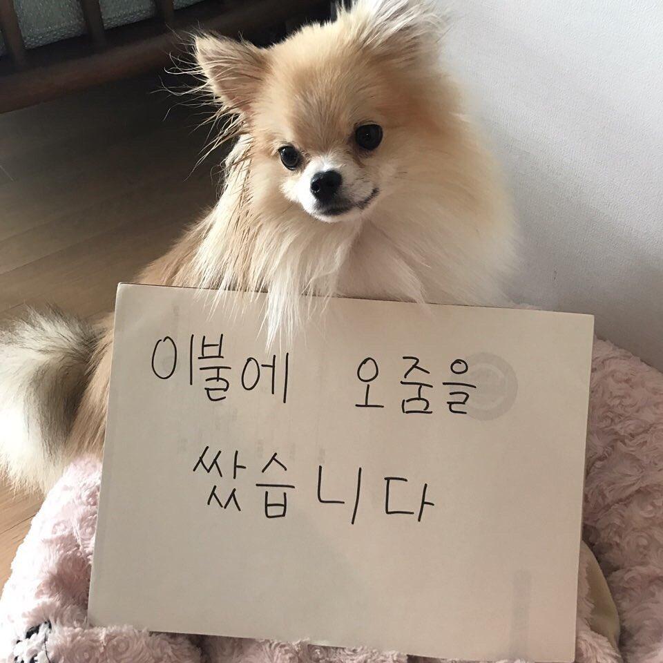 Pin by ImNaYeon Stan on Nayeon | Anime, Art, Nayeon