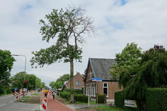 Natuurpunt Westland trekt aan de bel! https://t.co/SCqLx9SGmu https://t.co/PwMJepHFai