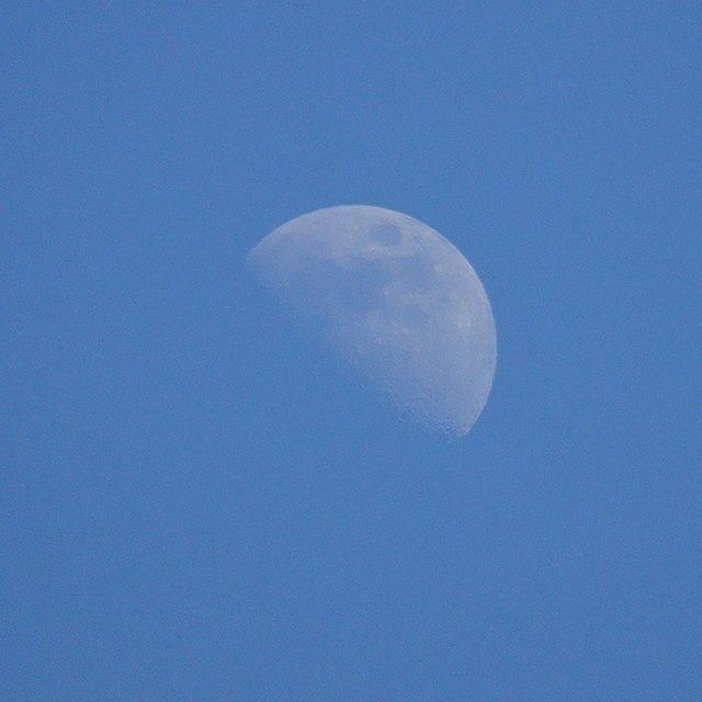 夏至の日の夕暮れ。久しぶりに、青空に月の姿。 慌ただしい夕方の時間ですが、ちょっと窓を開けてみませんか。 夜は短いけれど、その分待ち遠しい。