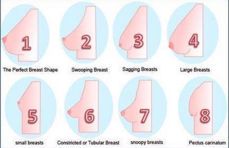 Which Bollywood Actresses Have Undergone Breast Enlargement
