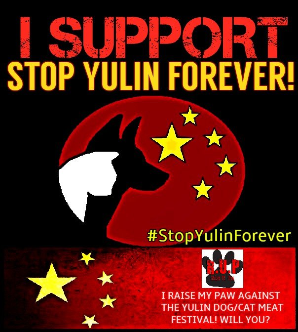 🌞 Beautiful #SummerSolstice is still a #nightmare for #dogs and #cats in #China, #Yulin 😱 👉 staphtraining.de/mission-etick/… #stop #YulinDogMeatFestival #StopYulinForever #animalrights #staphblog