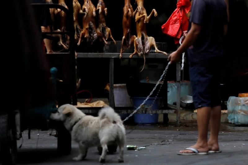 Home of China's dog meat festival defiant amid outcry https://t.co/0K0DBbIGcT https://t.co/zz8pW9rdNp