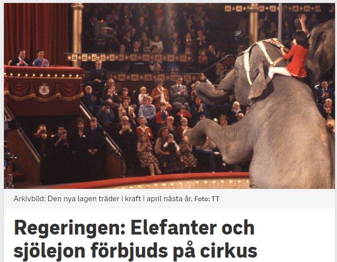 Regeringens beslut elefanter forbjuds pa cirkus