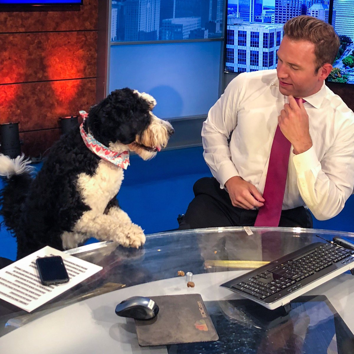 "Friendly reminder:  Friday is ""Take Your Dog to Work Day.""  Don't disappoint your dog!  #UPWITHWCNC <br>http://pic.twitter.com/ZACoHfMAwx &ndash; à WCNC-TV"