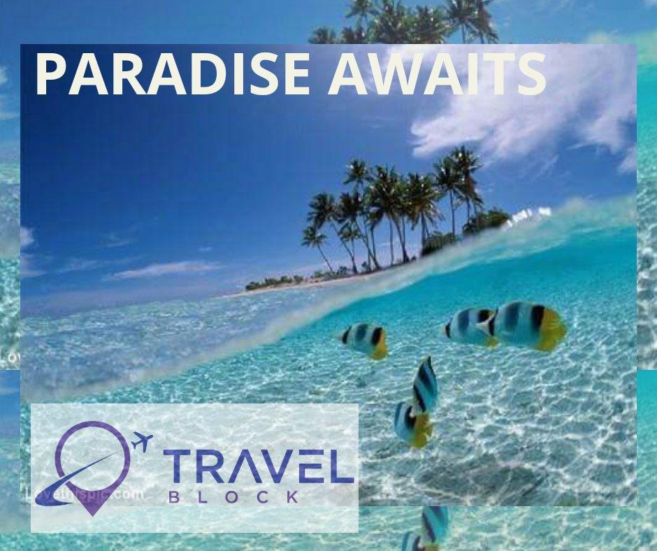 Travel in pure Luxury whilst saving 30%-60% with Travelblock! #vacation #holiday #travel #luxury #dreams #premium #crypto #tokensale @trvlblock @FourSeasons @HiltonHotels @Karismahotels @RitzCarlton @sheratonhotels #WorldCup   https://www. travelblock.io / &nbsp;  <br>http://pic.twitter.com/LqGZWHXGqU