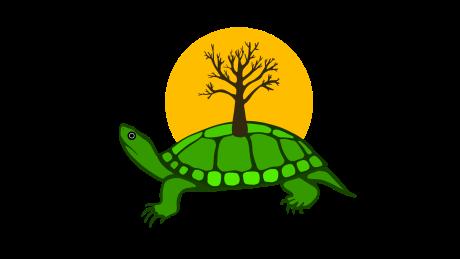 Anishinaabe artist designs Twitter Turtle Island emoji for Indigenous History Month  https:// ift.tt/2K9mHB8  &nbsp;  <br>http://pic.twitter.com/6ZLtnq59c6