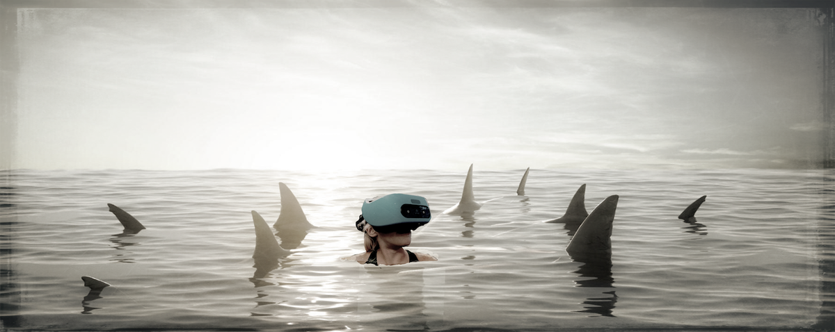 Dolphin Vr 2018