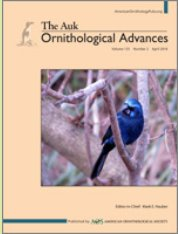 Have you seen the recent #ornithology articles published in the Auk? If not, check out the latest issue today! bioone.org/toc/tauk/135/2
