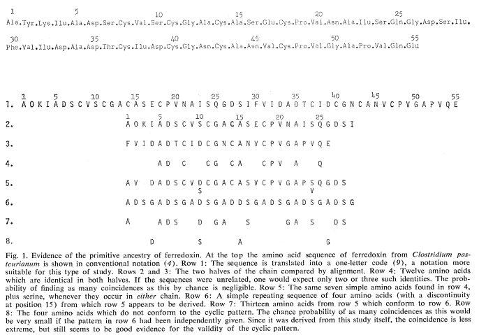 20 Amino Acid One Letter Code.Michael Hoffman On Twitter Eck And Dayhoff 1966 An Early