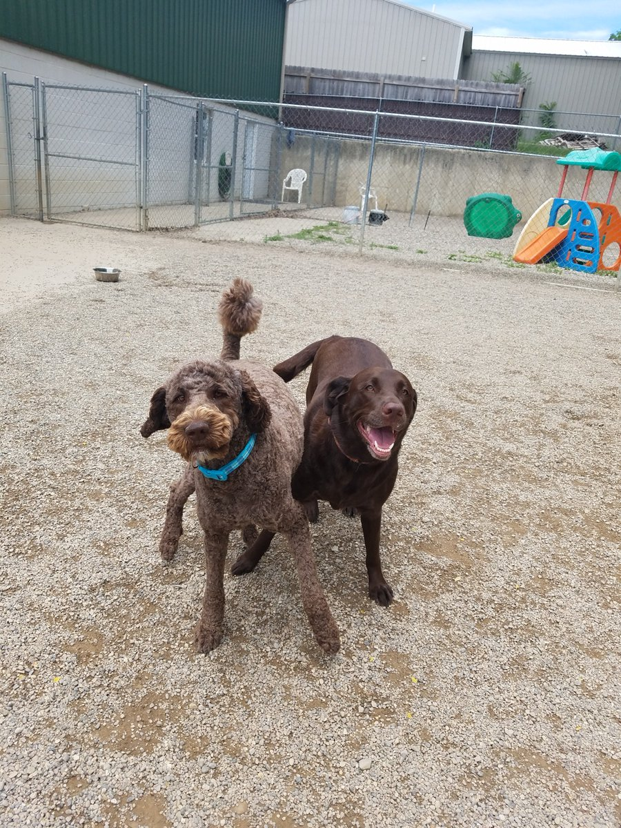 Mocha and Ruthie crack a smile for the camera before playing.