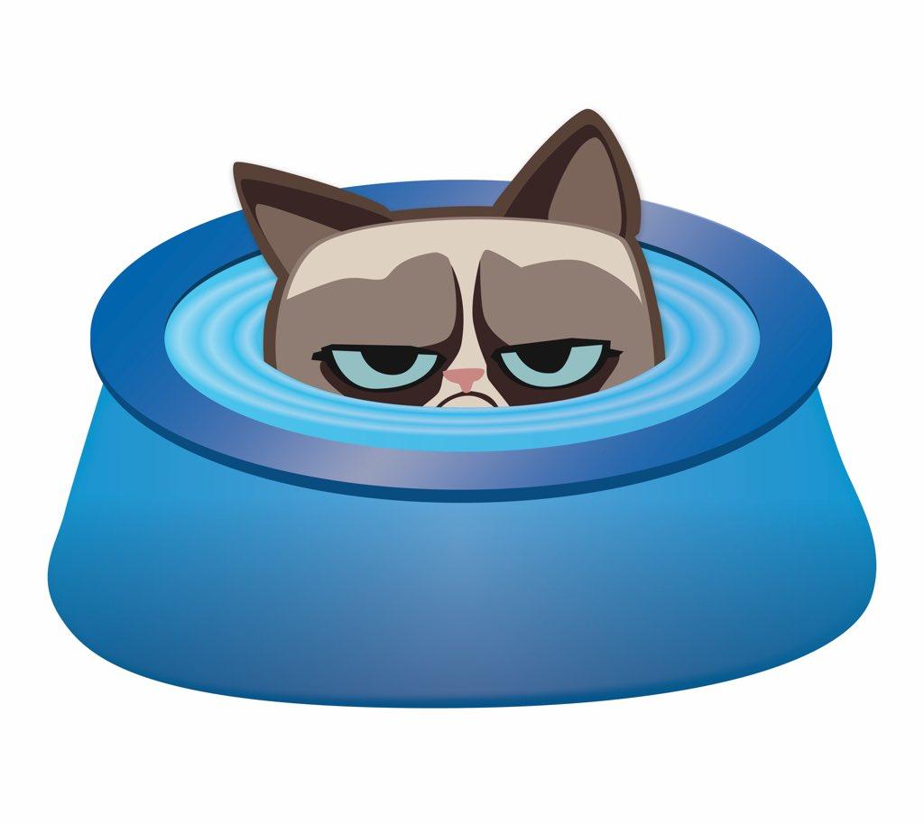 Grumpy Cat (@RealGrumpyCat) on Twitter photo 2018-06-23 17:17:51