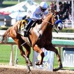Image for the Tweet beginning: Horse racing: Santa Anita meet