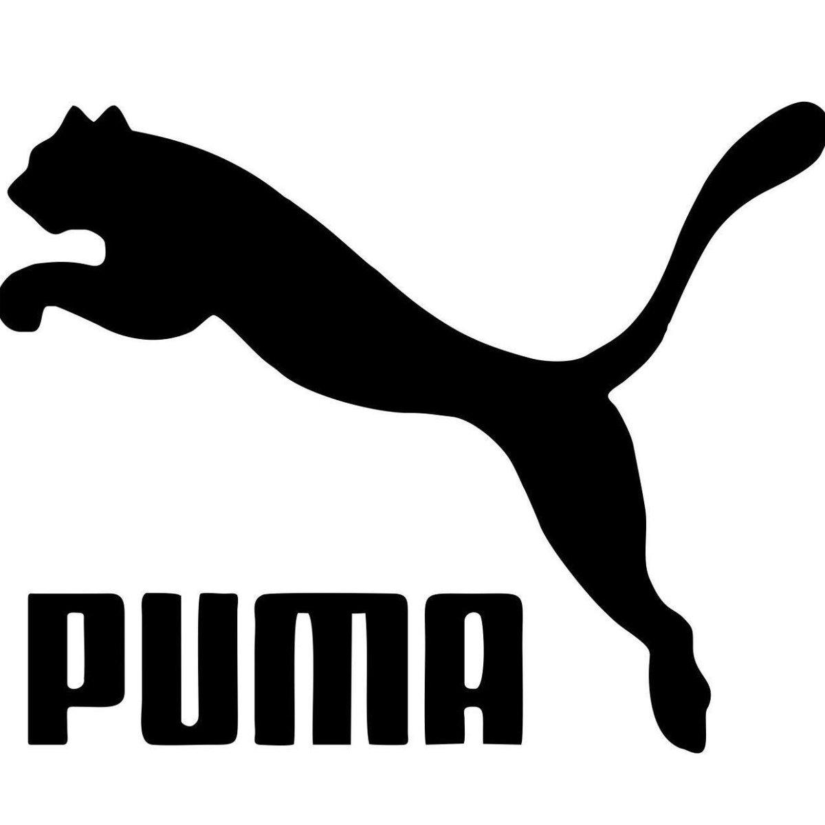 よく黒猫が横たわってる姿を「プーマみたい♪」って言ってる方見るけど、どうしてうちのはこうも違うのか。