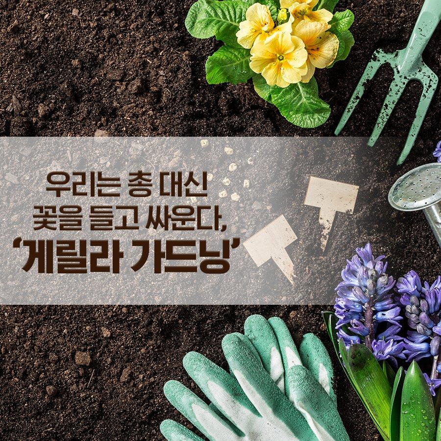 어느날 갑자기 지저분한 공터에 꽃밭이 생겼다?! 꽃을 들고 싸우는 게릴라 가드닝! 🌺 🌹 🌻  👉https://t.co/cFIuZZt6Si #게릴라_가드닝 #땅을_올바르게_사용하자