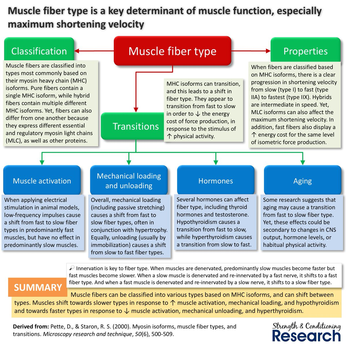 MICROSCOPY RESEARCH AND TECHNIQUE PDF