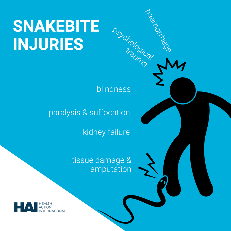 The Devastating Health Impact Of >> Health Action Int L On Twitter Injuries From A Venomous