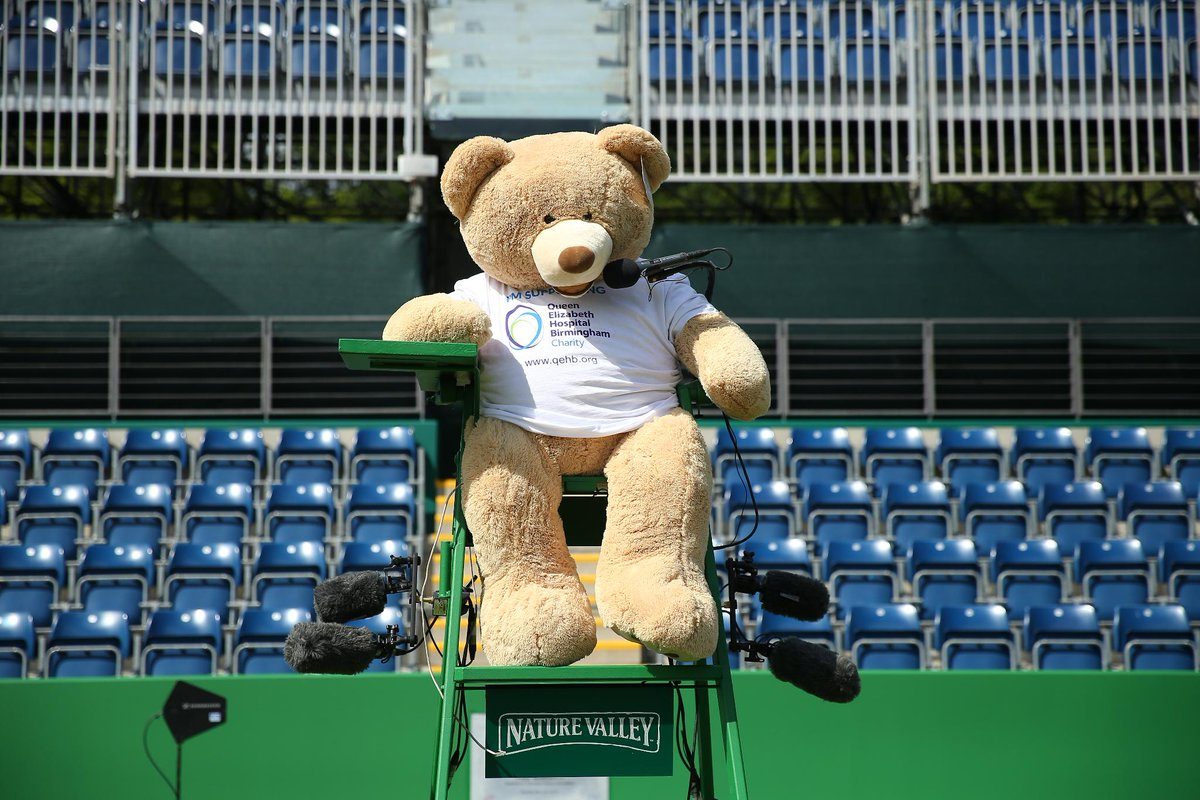 Meet Dennis the Bear from @QEHBCharity!  Join him on his big day out at the #NatureValleyClassic on the @BritishTennis Instagram story. As you can see he'll be getting quite involved! 🐻😁
