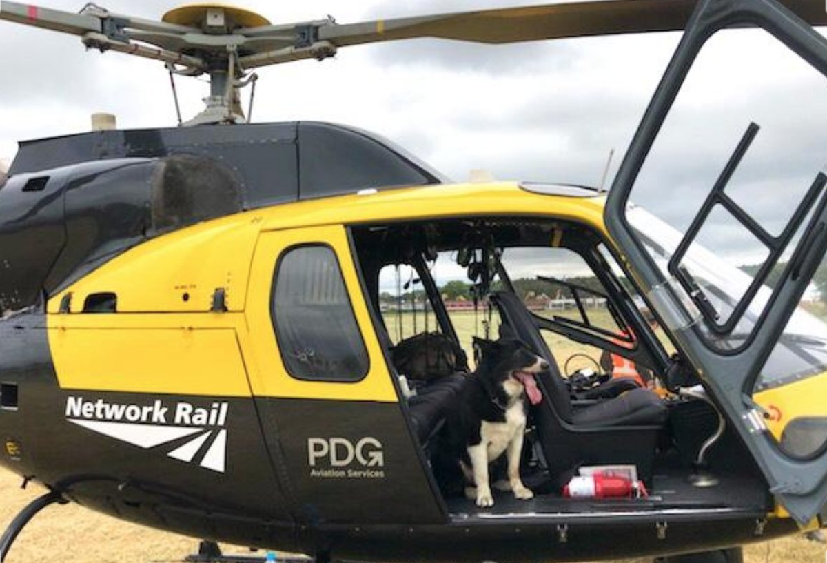 test Twitter Media - 🐶 Retired police dog Mojo arrived in style yesterday in one of our helicopters for @raillive18 😎  🚁 Our Air Operations team surveys the railway by helicopter and unmanned aircraft systems (UAS or drones).  Find out more ➡️ https://t.co/bUAkgZKpuf  @BTPDogs https://t.co/G6YuAEuTw8