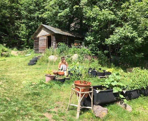 gardenculture photo